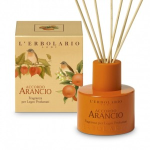 Accordo Arancio Fragrance for Scented Wood Sticks